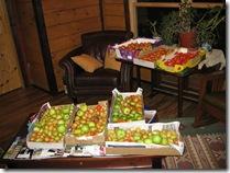 10-03-08 Harvesting 009