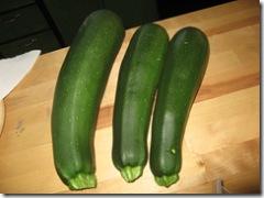 08-27-07 zucchini