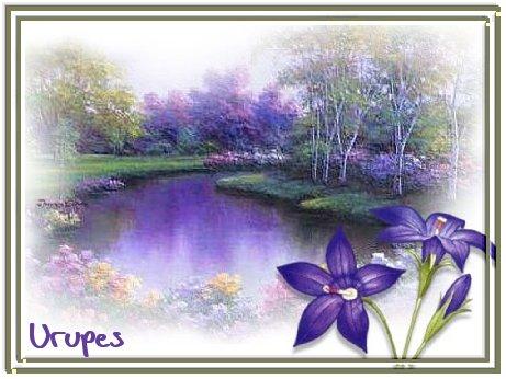 1071-3966b_thumb_sflores roxas de urupes